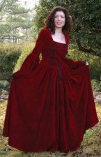 Scarlet Dream Gown in red velvet