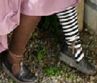 Thigh-high Renaissance socks, chocolate and black-white stripe