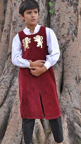 Boys royal tunic in red velvet with gold applique lions