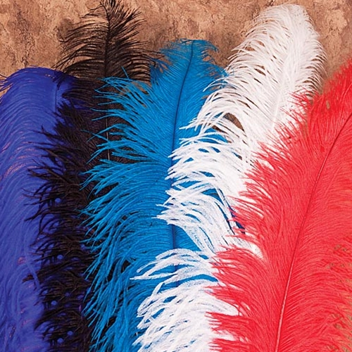 Ostrich plumes for hats in assorted colors