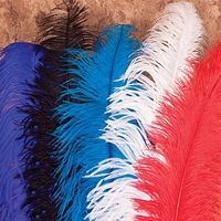Decorative plumes for Ren-Faire hats, assorted colors